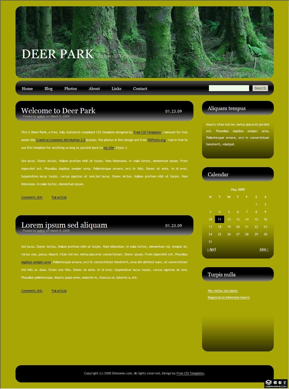 森林主题blog网页模板