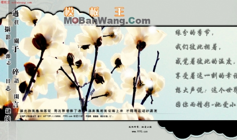 中国家具设计_中国家具设计超出预期