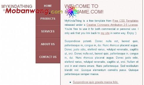 我的一些事个人网页模板