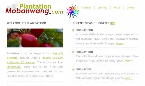 种植园地信息网页模板
