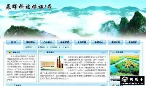 山水风格医药企业网页模板