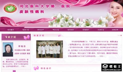 医院皮肤科网页模板