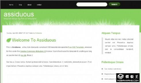 草绿主题BLOG网页模板