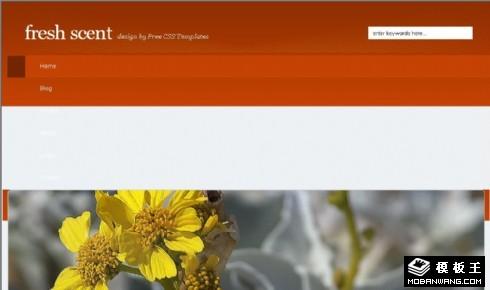 清新鲜花BLOG网页模板