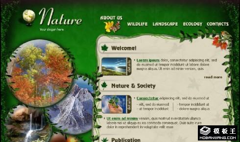 绿色生态自然保护区网页模板