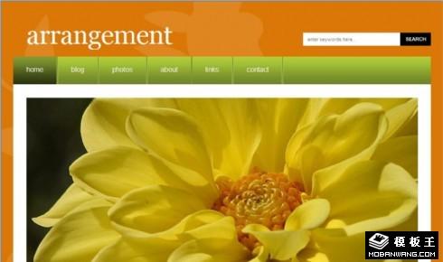 橙色分类日志网页模板