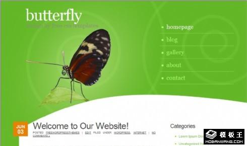 绿之蝶个性信息网页模板