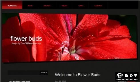 红色花蕾网页模板