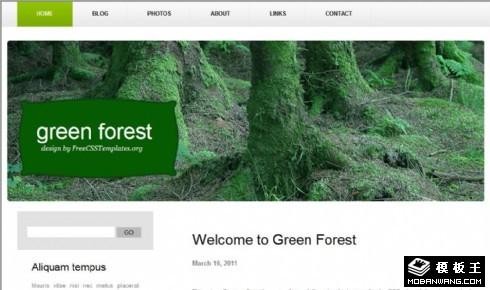 墨绿森林个性信息网页模板