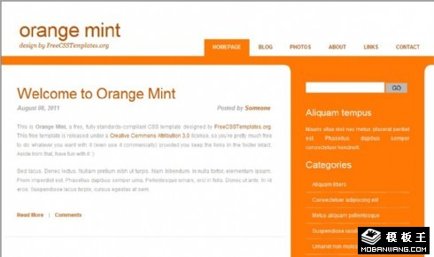 柳橙薄荷信息网页模板
