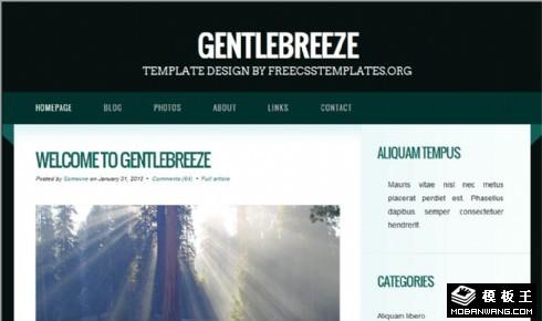 森绿日志信息网页模板