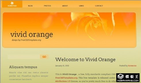动感橙色信息网页模板