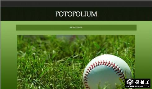 高尔夫绿荫图片信息网站模板