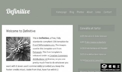 灰白信息动态网页模板
