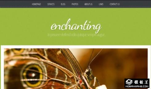 绿之妖娆生态信息网页模板