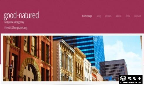 温和紫红色信息网页模板