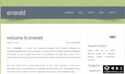 翡翠绿布艺背景网页模板