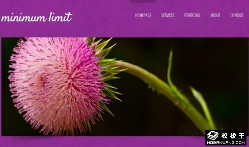 紫色简洁日志网页模板