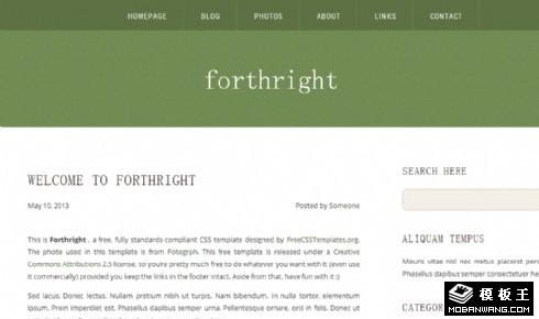 军绿色直率简洁blog网页模板