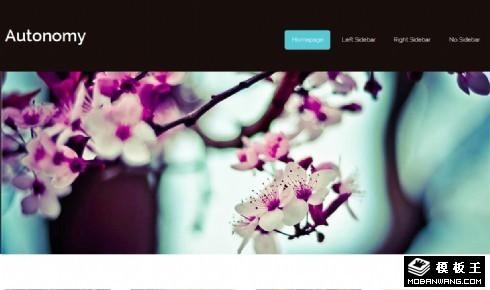 桃花景色信息网页模板