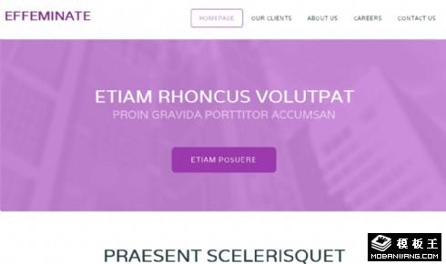 浅紫信息下载网页模板