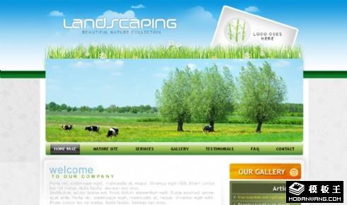 美丽的草原网页模板