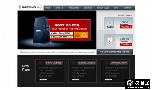 专业高级服务器网页模板