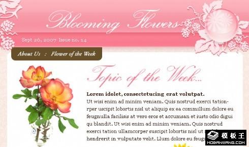 鲜花花艺EMD网页模板