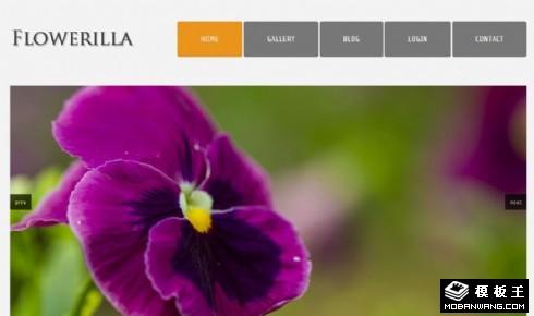 花朵图片展示网页模板