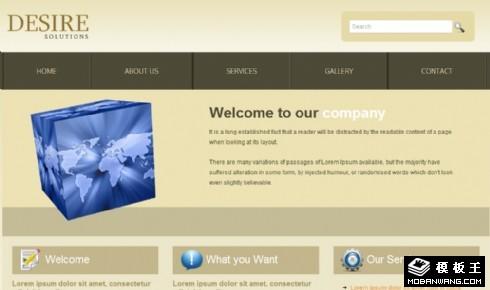 浅金色商务解决方案网页模板