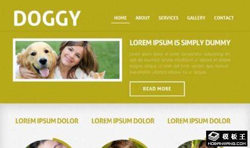 暗黄小狗宠物信息网页模板