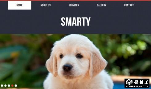 动物宠物网页模板