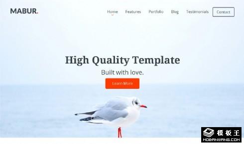 海鸟信息科技网页模板