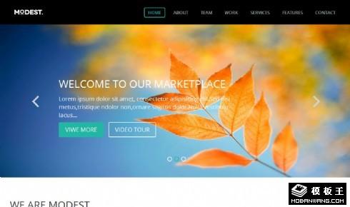 设计师品牌介绍网页模板图片