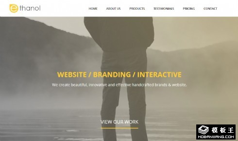 个性设计师团队响应式网页模板
