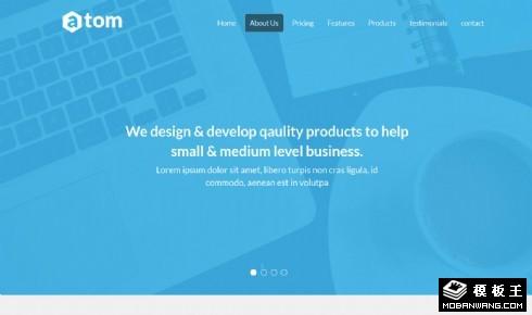 蓝色IT研发响应式网页模板