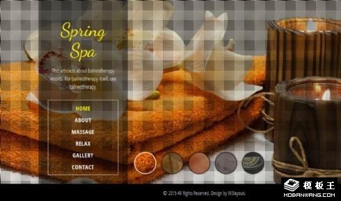 温泉水疗美容响应式网站模板