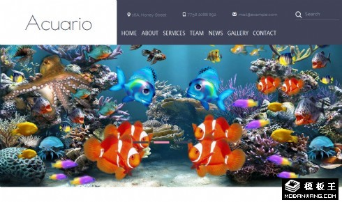 水族馆鱼类介绍响应式网页模板