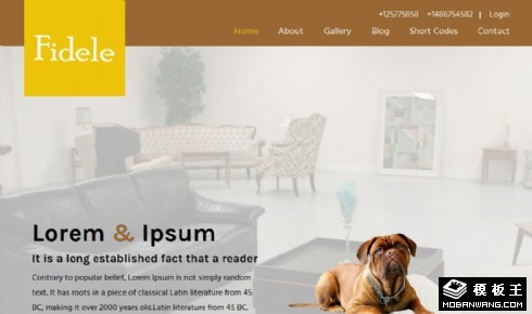 家庭宠物护理中心响应式网页模板