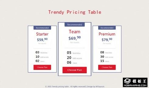 扁平参数价目表响应式网页模板