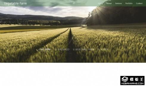 蔬菜农场响应式网页模板