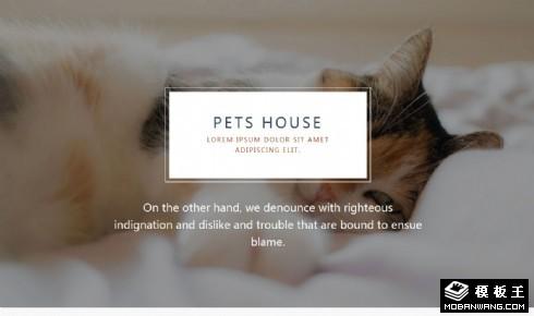 宠物屋服务机构响应式网页模板