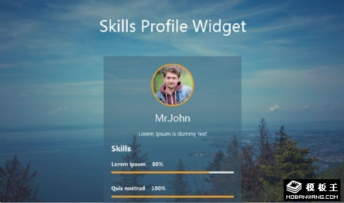 个人技能值标签响应式网页模板