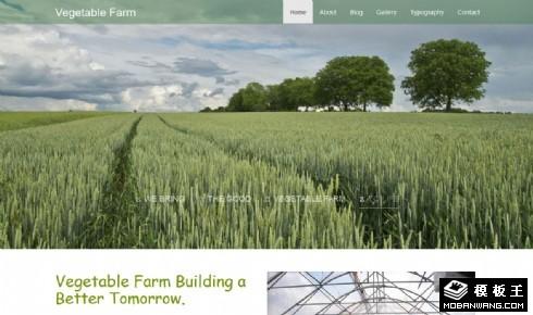 果蔬大棚农场响应式网页模板