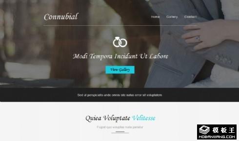 简洁爱的记录结婚服务响应式网页模板