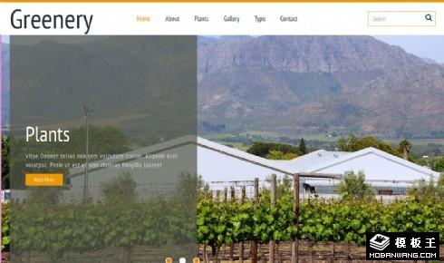 温室花卉种植大棚响应式网页模板