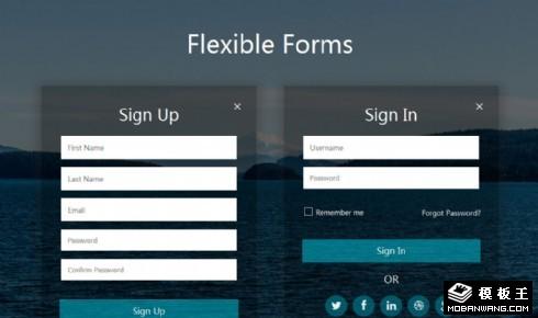 海面注册登录表单网页模板