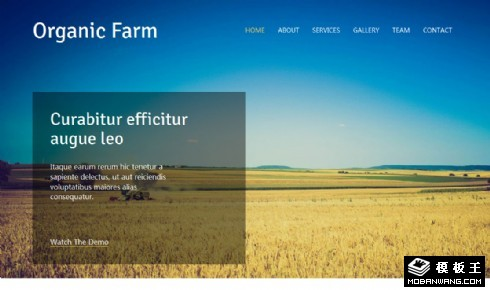 有机农场介绍响应式网页模板