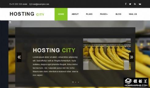 服务器主机服务企业网站模板