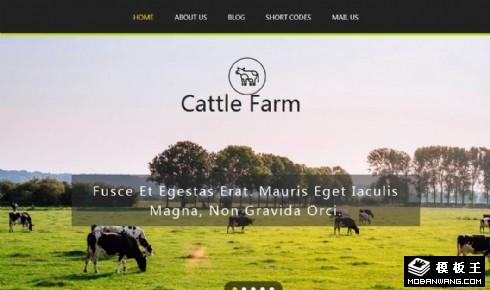 奶牛场动态展示响应式网站模板